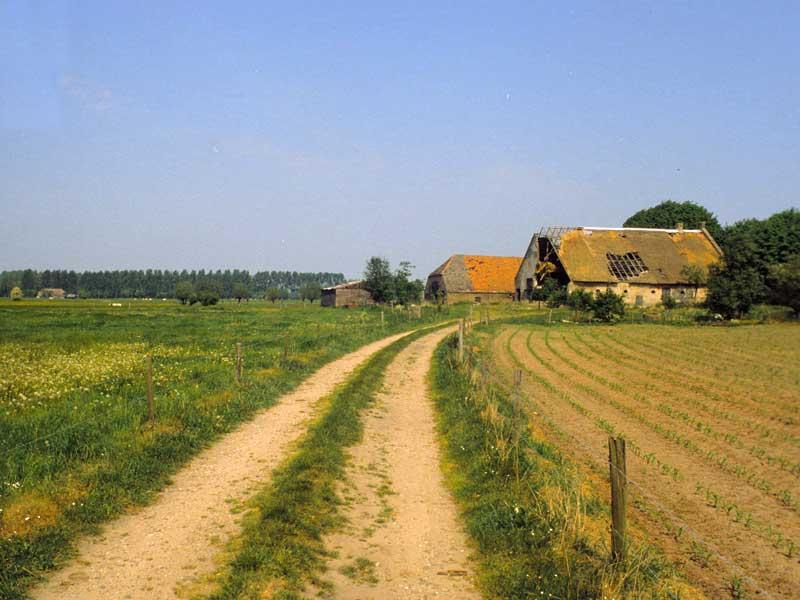 29. Ökoruine (im Gegensatz zur Industriebrache): Tongren, Bauernhaus